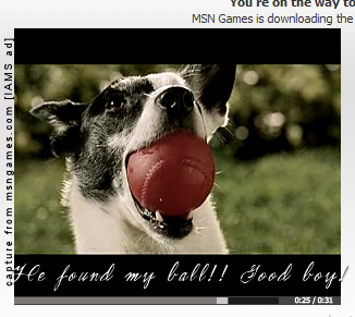 Image captured by ThePearLady / from IAMS dog food web advertisement provided by msngames.com